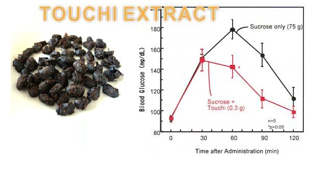 Touchi extract diagran